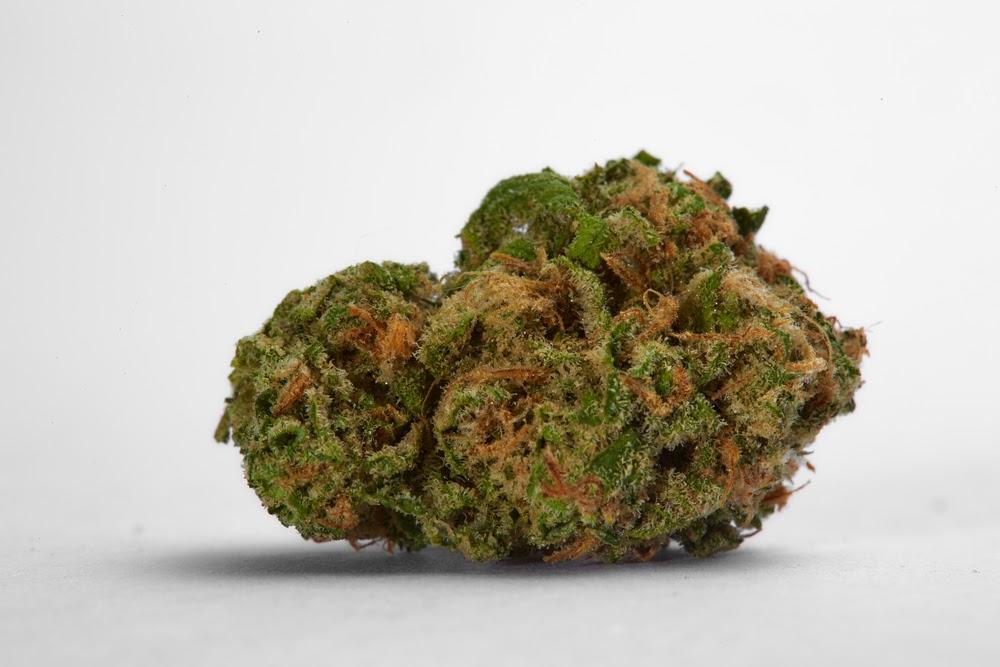 sativa strains top 5