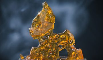 How To Make Shatter of The Highest Grade
